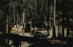 Roaring Camp & Big Trees Corkscrew loop Postcard