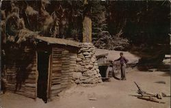 Tharp's Log home in Sequoia National Park Postcard