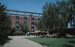 Memorial Union Building and Patio, University of California Postcard