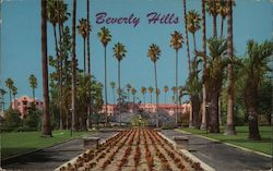 Beverly Hills Hotel as seen looking through Will Rogers Memorial Park Postcard