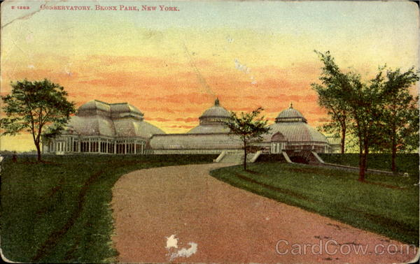 Conservatory , Bronx Park New York City