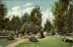 View In Lawton Park