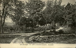 Scene In Sturbridge Postcard