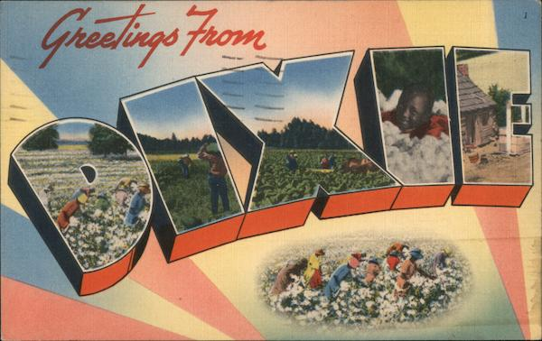 Greetings from Dixie - a Cotton Pickin' Postcard Large Letter