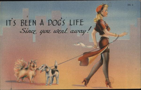 It's Been a Dog's Life Since You Went Away Swimsuits & Pinup