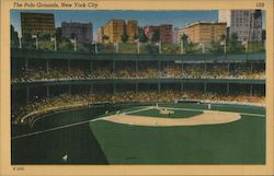 The Polo Grounds Postcard