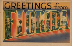 Greetings from Florida, Land of Sunshine and Flowers Postcard