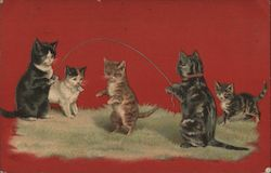 Cats with Jump Ropes