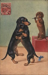 Dachshunds dancing and playing a flute Postcard