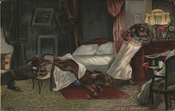 Law of Honor - Dachshund Finds a Strange Dog in His Bed Postcard