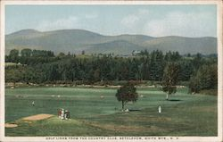 Golf Links from the Country Club, White Mts. Postcard