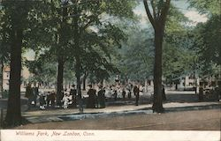 Williams Park Postcard
