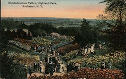 Rhododendron Valley, Highland Park Postcard