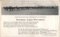 A Sixteen horse String Team, Freighting Supplies to the Mountains Postcard