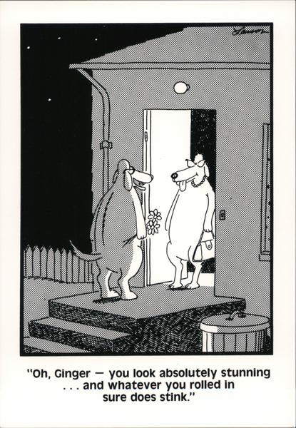 The Far Side: Oh Ginger - You Look Absolutely Stunning Gary Larson Postcard