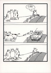 The Far Side: Car!