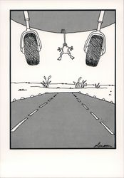 The Far Side: Frog Catching an Airplane