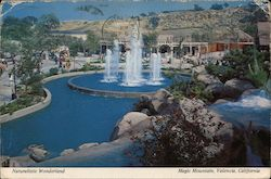 Naturalistic Wonderland - Six Flags Magic Mountain Postcard