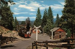 Yosemite Mountain - Sugar Pine Railroad Postcard