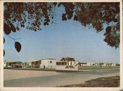 Mesa Ranch Mobile Home Park Postcard