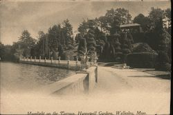 Moonlight on the terrace Hunnewell Gardens Postcard
