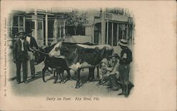 Man with cow-Dairy on foot Postcard
