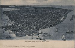 Birds-Eye View Postcard