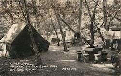Camp Site, Pfieffer Big Sur State Park Postcard