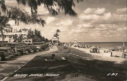 Cars and Sunbathers, Delray Beach Postcard