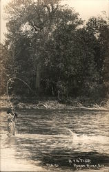 A 7 lb. Trout, Rogue River, Oregon Postcard