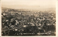 Homes in the Hills Postcard