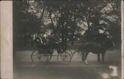 Three Young Men in a Horse-Drawn Buggy on Lakeshore Drive