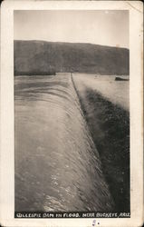 Gillespie Dam in Flood Postcard