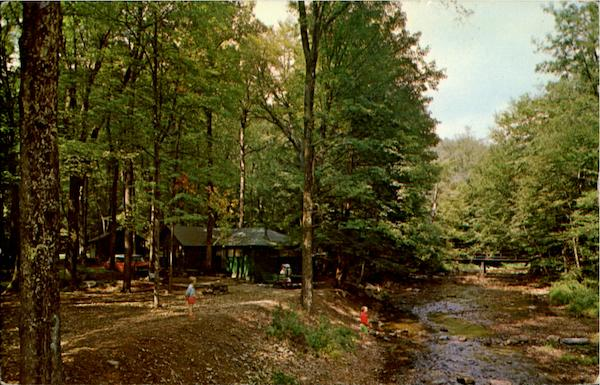 Cabins In The Quaker Run Allegany State Park New York