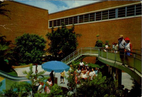 Cantilever Ramp Busch Gardens Tampa Fl