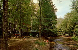 Cabins In The Quaker Run Postcard