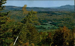 Scenic View Of Fox Run Resort Postcard
