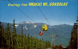 Greetings From Wildcat Mt. Gondola, Pinkham Notch