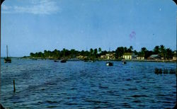 View To The Island Postcard