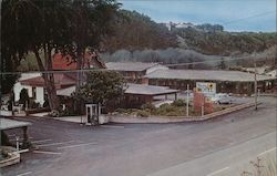 Blue Bird Motel Postcard