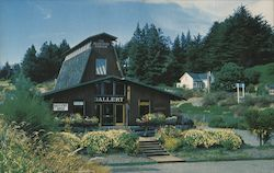Ruth Carlson Studio Gallery in Redwood Center Postcard