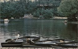 Cacapon Lake Postcard