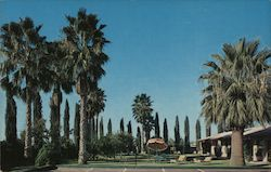 Desert Rest Motel Postcard