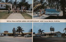 Royal Palm Motor Lodge and Restaurant Postcard