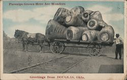 Wagon of Giant Parsnips Across the Tracks Postcard