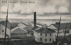 Alaska Packers Association Cannery Postcard