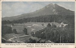 Grazing Farm on the West Side of Grandfather Mountain Postcard