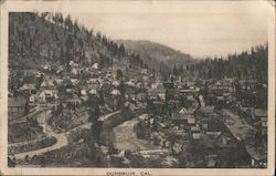 General View of Dunsmuir
