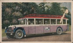 Purple Swan Safety Coach Lines, Inc. Postcard