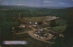 Hickory Valley Farm Postcard